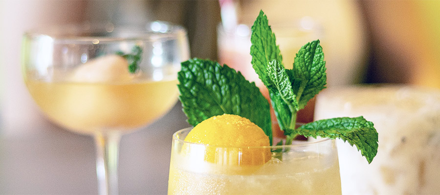 mint leaves in citrus frozen beverage